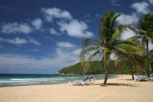 plaża na haiti
